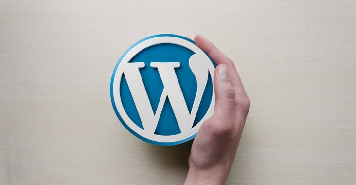 installer un plugin Wordpress